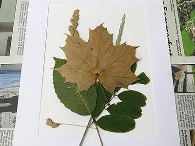 Kunst mit Blätter