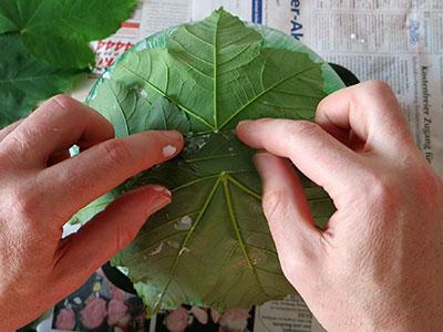 Korb aus Mod Podge und Blätter