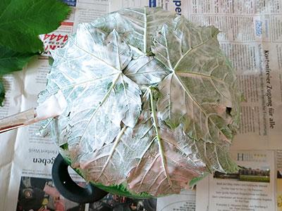 Mod Podge und Blätter