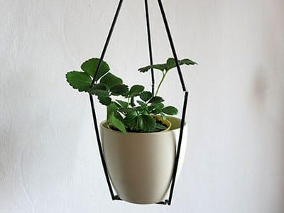 DIY Pflanzenhänger