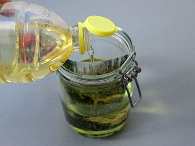 Sepia Effekt mit Sonnenblumenöl