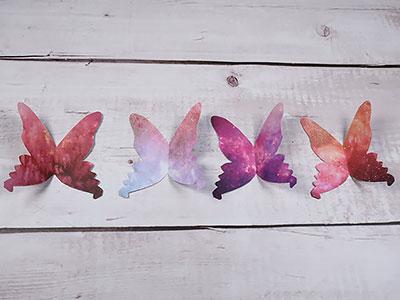 Schmetterlinge sortieren