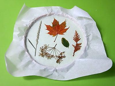 Blätter arrangieren