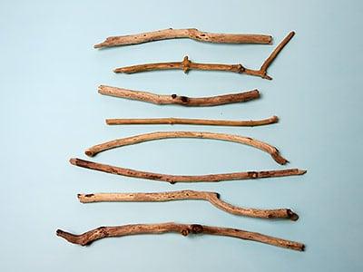 Zweige anordnen